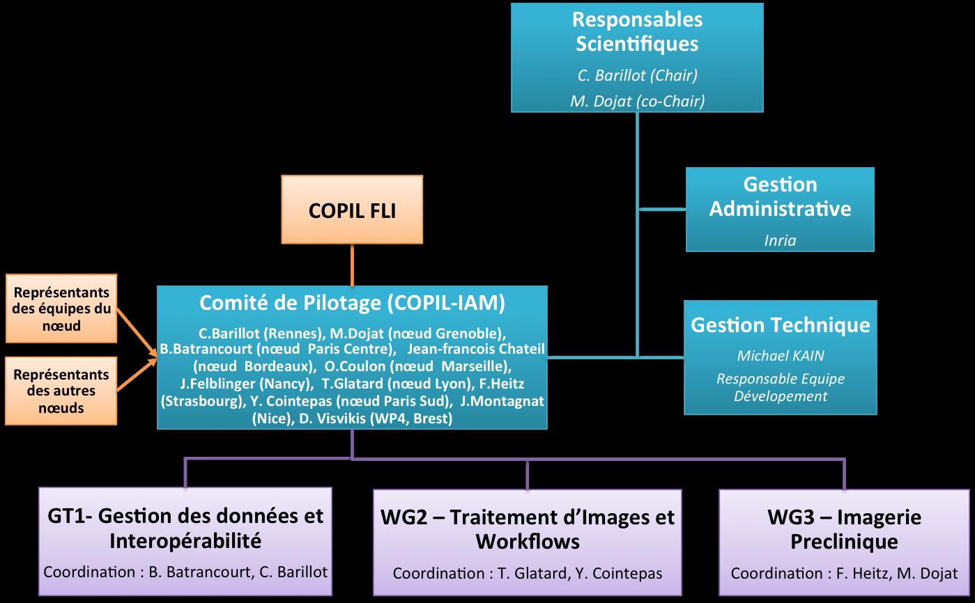 Organization-IAM-En