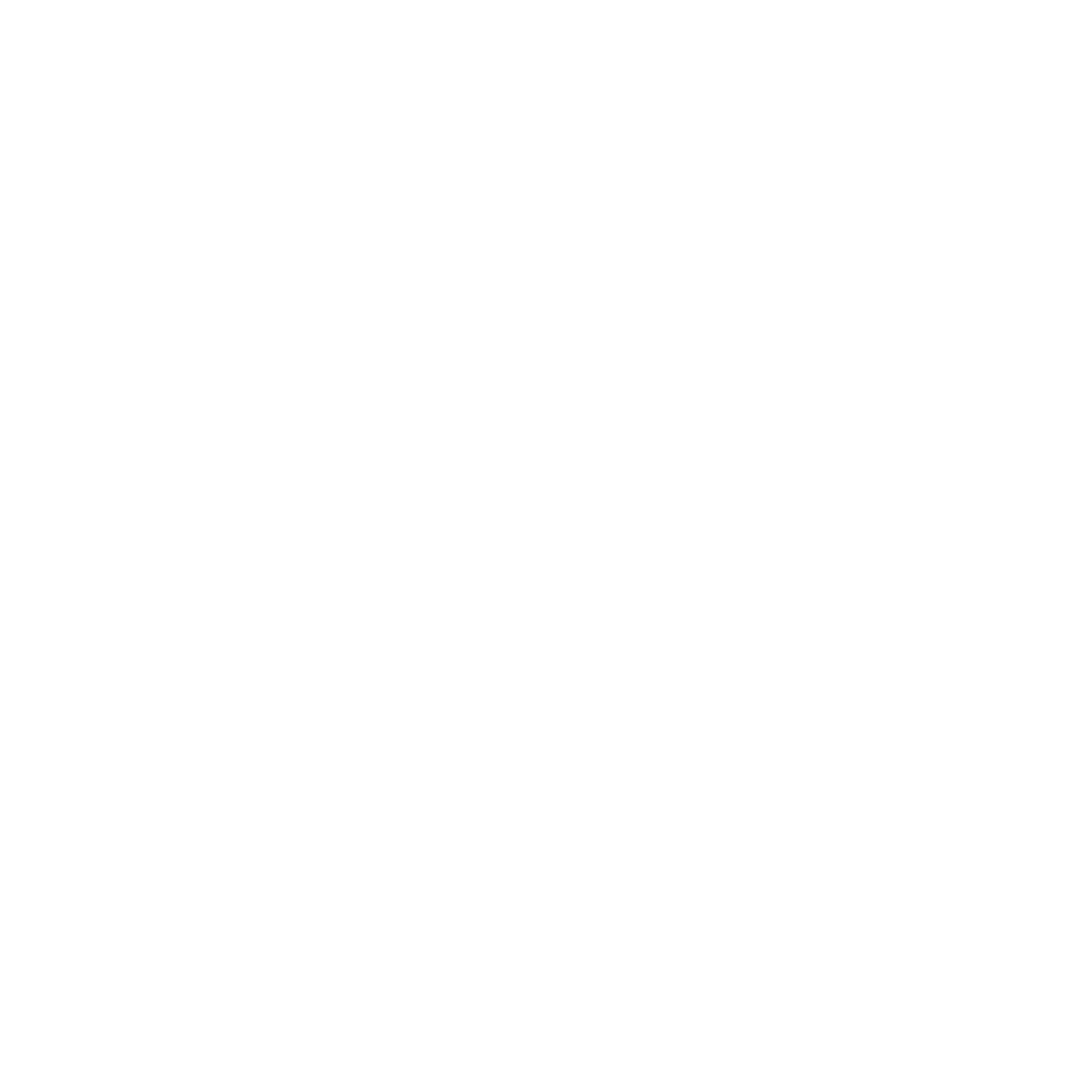 Logo rond blanc STP